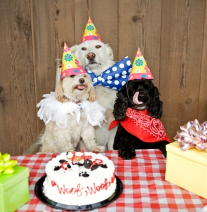 Dogs I\'d invite if I actually had a birthday party.